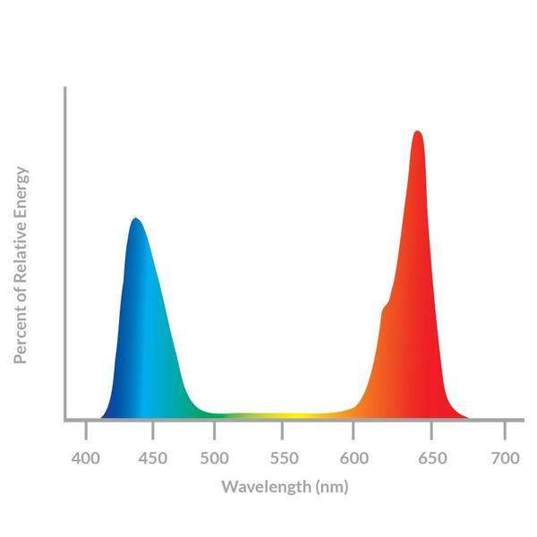 California Lightworks Solar Controller sistema controllo LED
